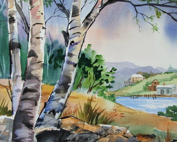 Birch Trees Poster featuring the painting Distant View by Dianna Willman