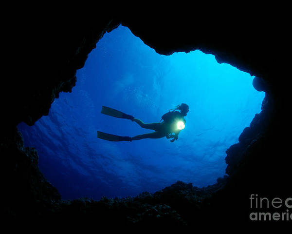 A81e Poster featuring the photograph Diver At Cavern Entrance by Dave Fleetham - Printscapes