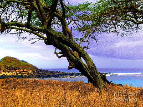 Dixie Maru Beach Poster featuring the photograph Dixie Maru Cove by James Temple