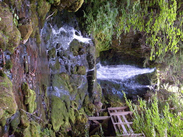 Waterfall Poster featuring the photograph Dixon Falls by Melissa Parks