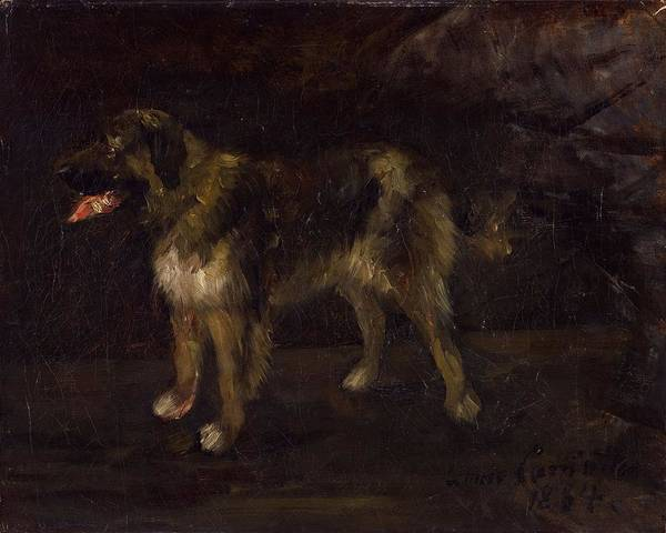 Lovis Corinth 1858-1925 Dog Study Poster featuring the painting Dog Study by Lovis Corinth
