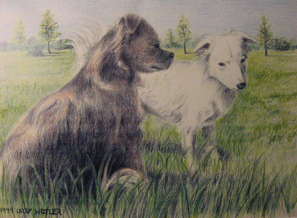 Dogs Poster featuring the drawing Dogs In A Field by Larry Whitler