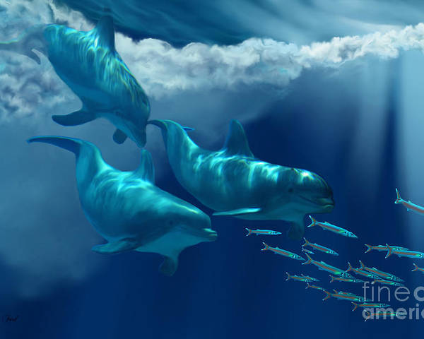 Bottlenose Dolphin Poster featuring the painting Dolphin World by Corey Ford