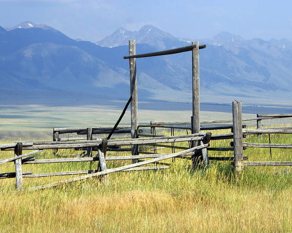 Mountains Poster featuring the photograph Don't Fence Me In by Marty Koch