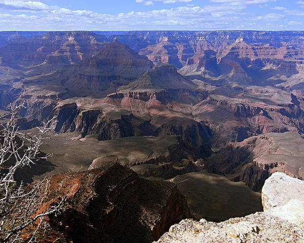 Grand Canyon National Park Poster featuring the photograph Don't Get Too Close To The Edge by Larry Ricker