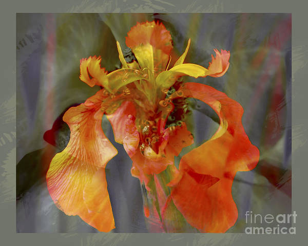 Floral Poster featuring the photograph Dragons Breath by Chuck Brittenham