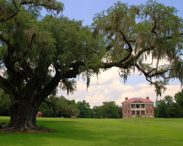 Photography Poster featuring the photograph Drayton Hall Plantation Charleston by Susanne Van Hulst