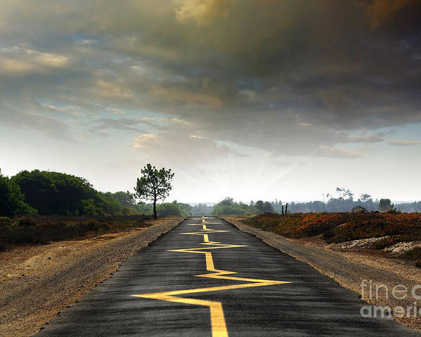 Asphalt Poster featuring the photograph Drive Safely by Carlos Caetano