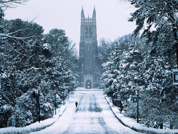 Duke University Poster featuring the photograph Duke Snowy Chapel Drive by Duke University