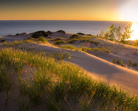 Sand Dunes Poster featuring the photograph Dunes by Jason Naudi Photography