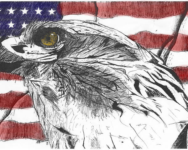 Patriotic Poster featuring the drawing Eagle by Nathaniel Hoffman