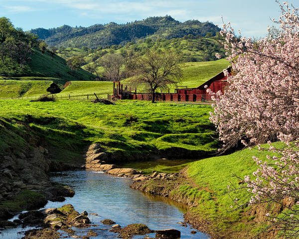 Farm Poster featuring the photograph Early Spring In The Valley by Kathleen Bishop