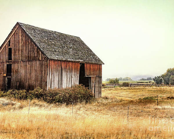 Barn Poster featuring the photograph Earthly Possessions by Jean OKeeffe Macro Abundance Art