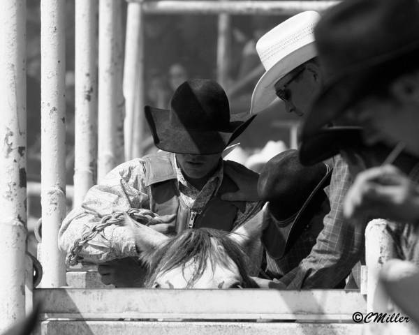 Rodeo Poster featuring the photograph Easing In by Carol Miller