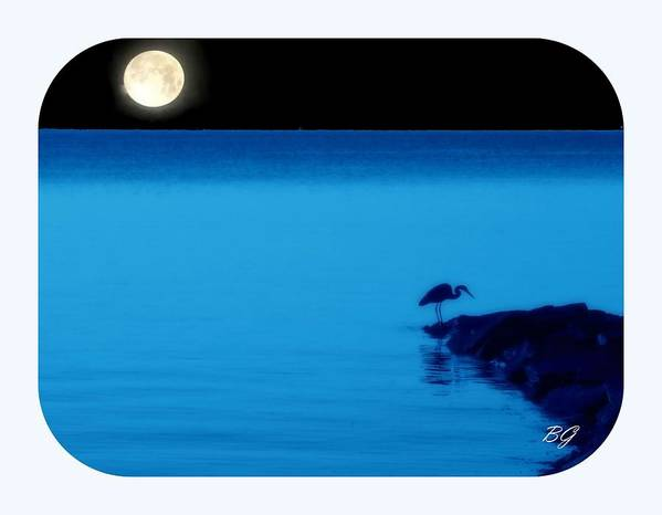 Ocean Poster featuring the photograph Egret In Full Moon Night by Bruce Gatten
