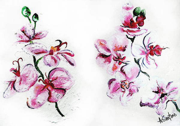 Orchid Poster featuring the painting Either Orchid by Amanda Sanford