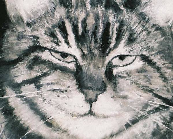 Close Up Of Tabby Cat Poster featuring the painting El Gato by Billie Colson