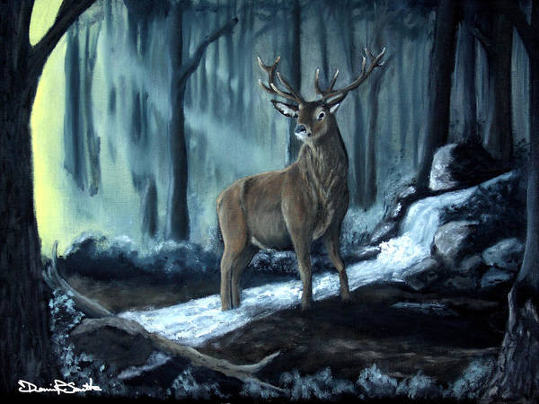 Elk Poster featuring the photograph Elk In The Morning by Dennis Smith