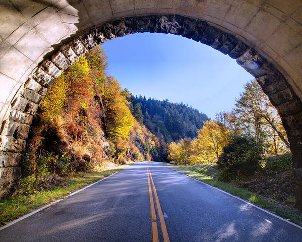 Blue Ridge Parkway Photographs Poster featuring the photograph Emerging by Rob Travis