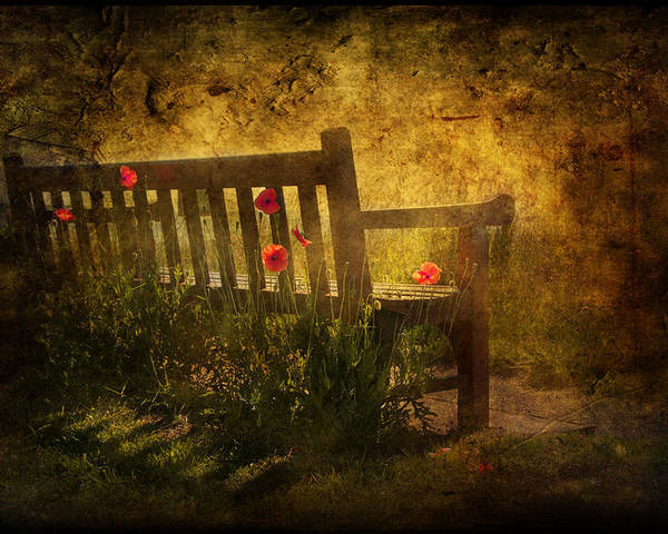 Background Poster featuring the digital art Empty Bench And Poppies by Svetlana Sewell