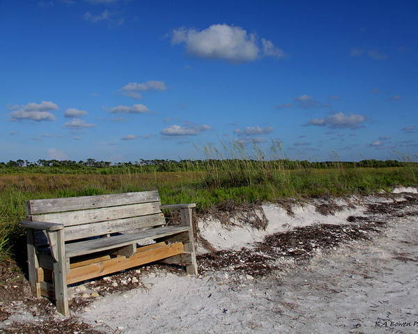 Landscape Poster featuring the photograph Empty Bench by Barbara Bowen