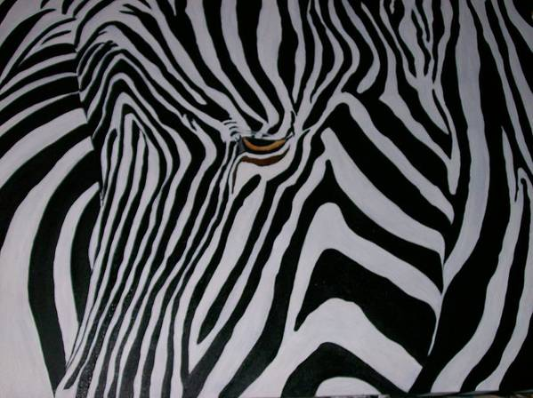 Zebra Poster featuring the painting Equus Grevyi  by Leo Gordon