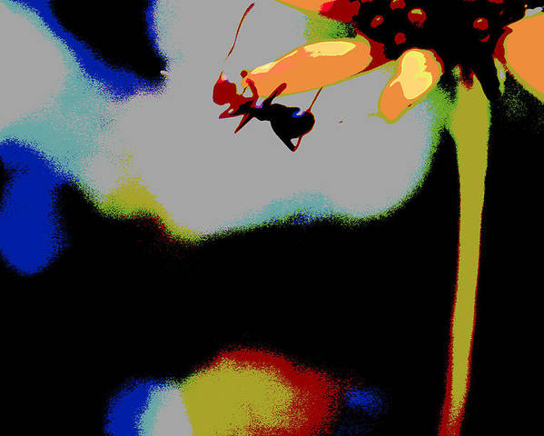 Ant Poster featuring the photograph Escape by Nabila Khanam
