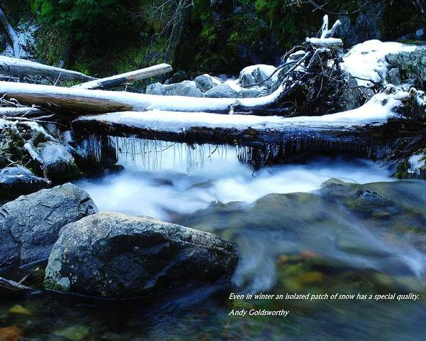 Images And Words Poster featuring the photograph Even In Winter by Jeff Swan