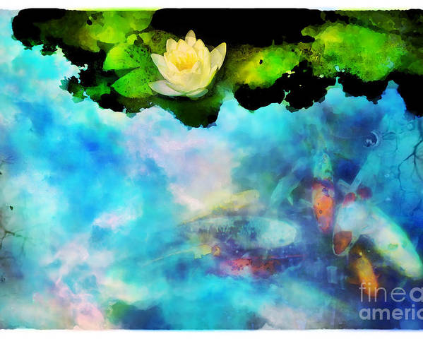 Koi Poster featuring the photograph Evening Reflections by Gina Signore