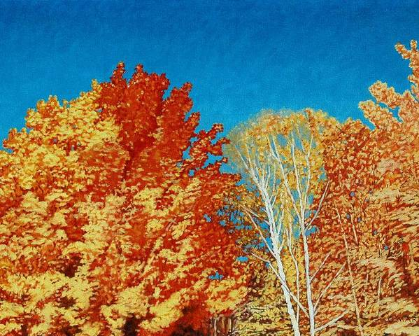 Fall Color Poster featuring the painting Fall by Allan OMarra