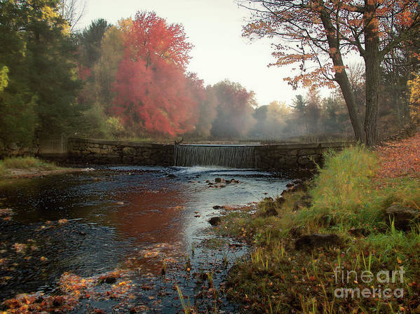 Foggy Fall Morning Poster featuring the photograph Fall at Griffin Mill by Diana Nault