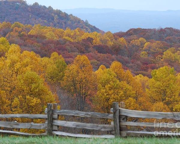 Fence Poster featuring the photograph Fall Blend by Eric Liller