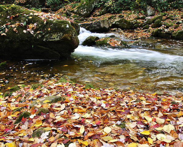 Rushing Mountain Stream Poster featuring the photograph Fall Color Rushing Stream by Thomas R Fletcher