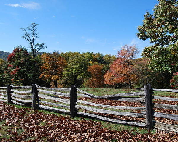 Rural Poster featuring the photograph Fall Fence by Eric Liller