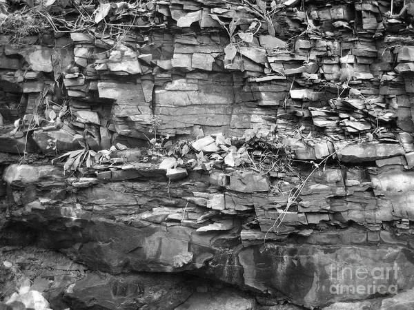 Rocks Poster featuring the photograph Fallen Rocks by Reb Frost