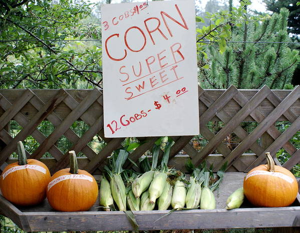 Farm Produce Poster featuring the photograph Farm Stand by Sonja Anderson