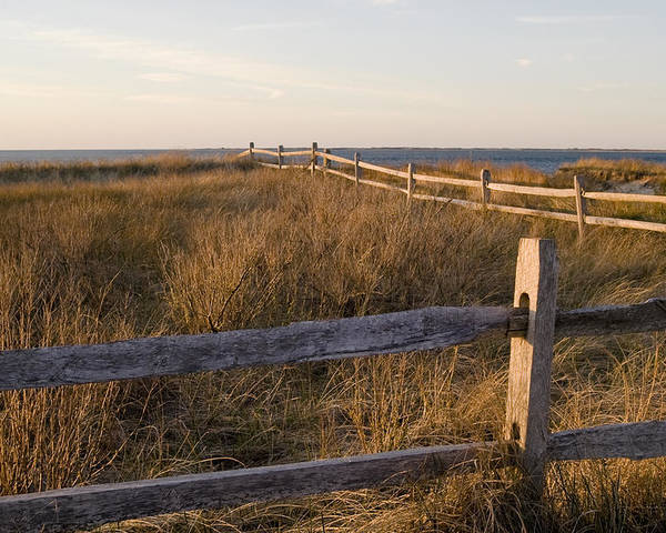 Krauzyk Poster featuring the photograph Fence Along The Dunes - Madaket - Nantucket by Henry Krauzyk