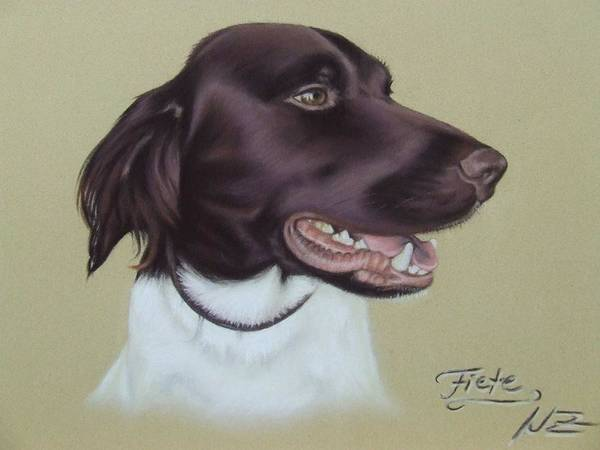 Dog Poster featuring the pastel Fiete by Nicole Zeug