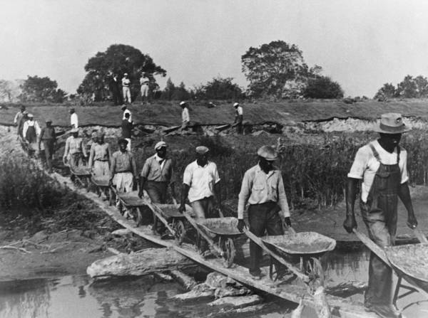 History Poster featuring the photograph Fifteen African American Laborers by Everett