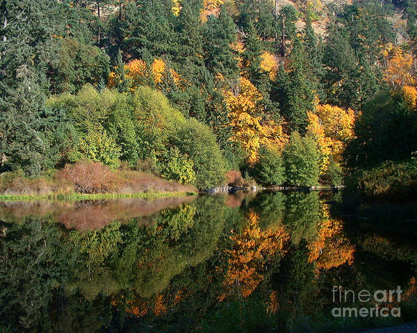 Fall Poster featuring the photograph Final Reflection by Larry Keahey