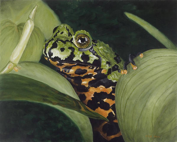 Toad Poster featuring the painting Fire belly Toad by Elizabeth Rieke Hefley