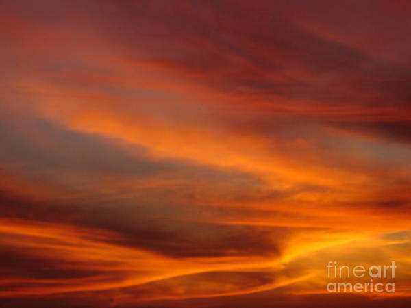 Sunsets Poster featuring the photograph Fire in the Sky 1 by Chad Natti