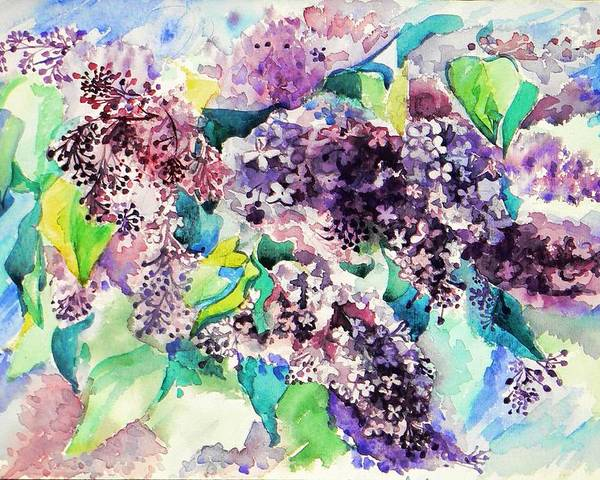 Watercolor Poster featuring the painting First Lilac. by Anastasia Michaels