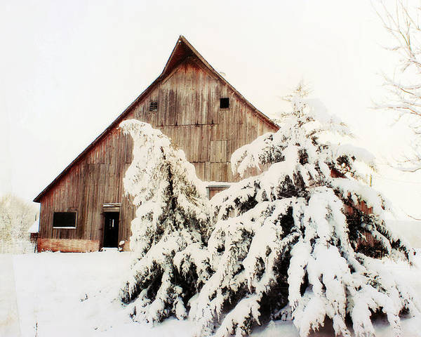 Barn Poster featuring the photograph First Snowfall by Julie Hamilton