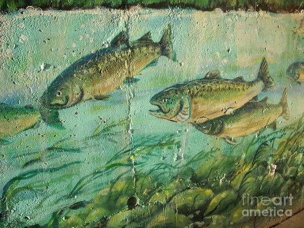 Fish Poster featuring the photograph Fish On The Wall 2 by Vesna Antic