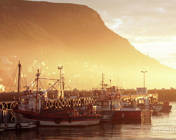 Dawn Poster featuring the photograph Fishing Boats At Dawn Kalk Bay South Africa by Neil Overy