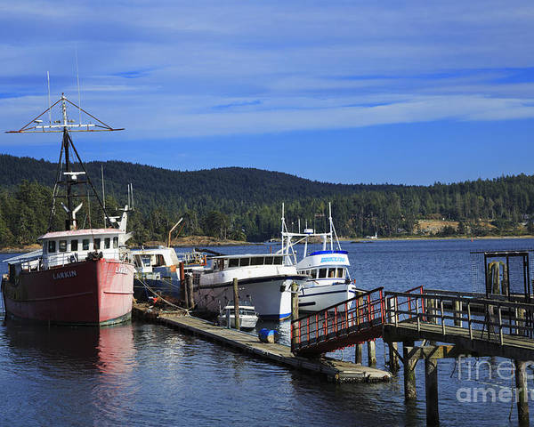 Fishing Poster featuring the photograph Fishing Boats In Sooke by Louise Heusinkveld