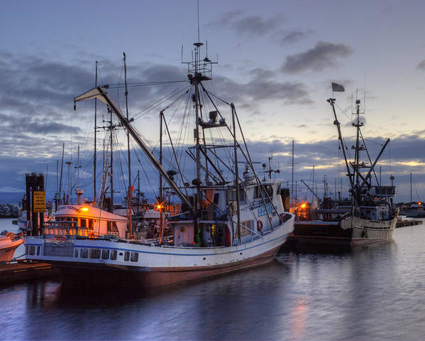 Fishing Boats Poster featuring the photograph Fishing Fleet by Randy Hall