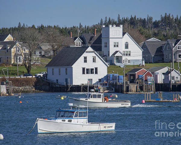 Cutler Poster featuring the photograph Fishing Harbor by Alana Ranney