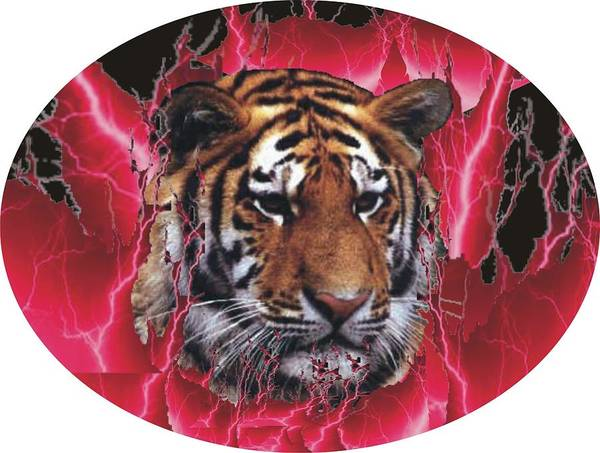 Poster featuring the photograph Flame Tiger by Kathy Frankford